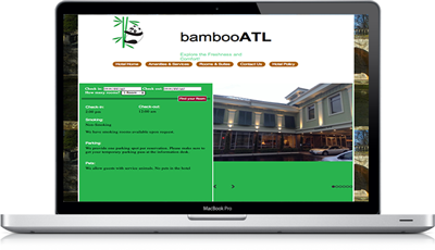 Laptop version of the website